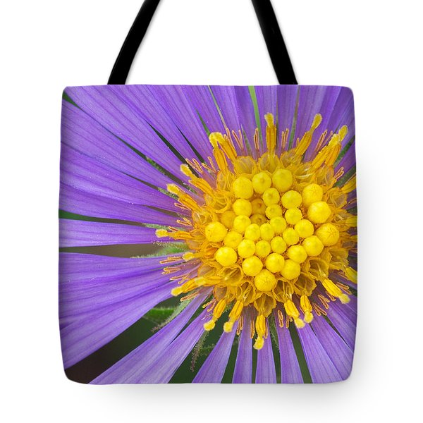 New England Aster Tote Bag