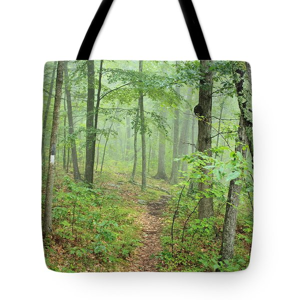 New England National Scenic Trail Misty Forest Tote Bag by John Burk