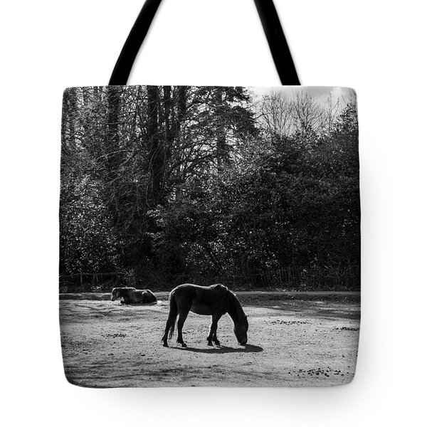 New Forest Silhouette Tote Bag by Hazy Apple
