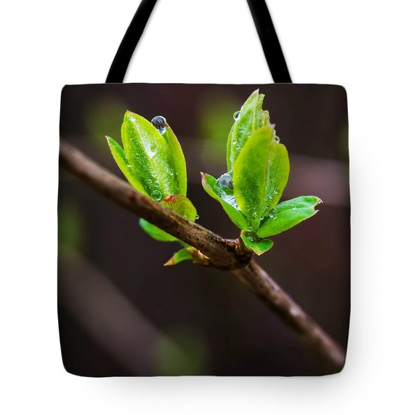 New Growth In The Rain Tote Bag