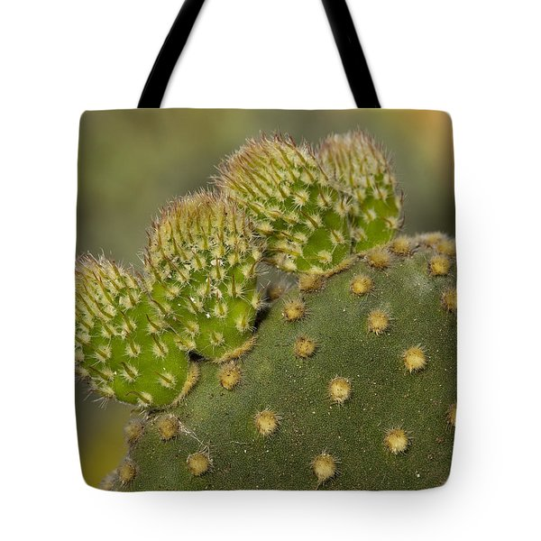 New Growth Tote Bag by Kelley King
