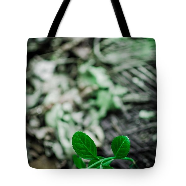 New Life From Ruins  Tote Bag
