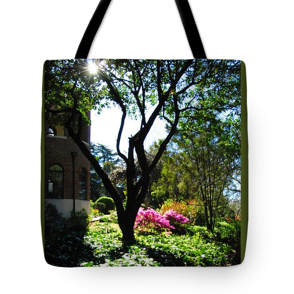 Tote Bag featuring the photograph New Mercies by Linda Mesibov