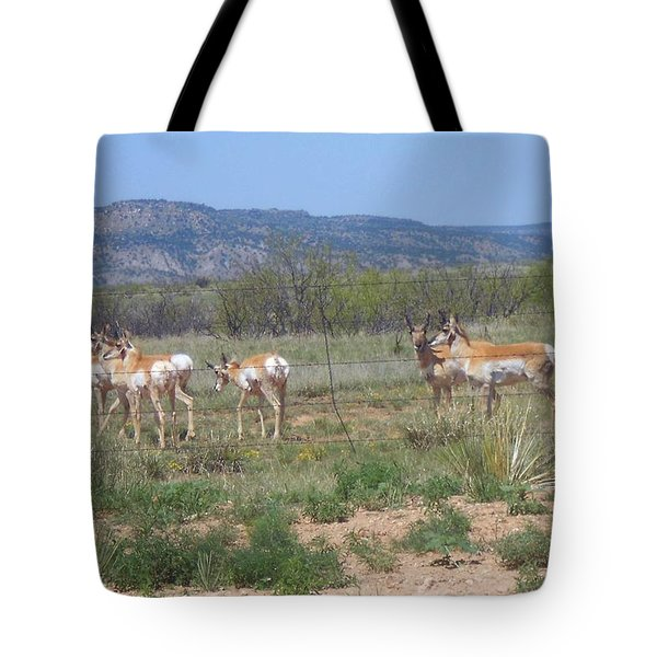 New Mexico Antelope 1 Tote Bag by Sheri Keith