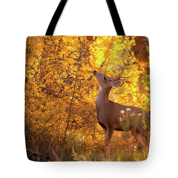 New Mexico Buck Browsing Tote Bag