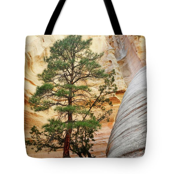 New Mexico Tent Rocks Slot Canyon Tree Landscape Tote Bag by Andrea Hazel Ihlefeld