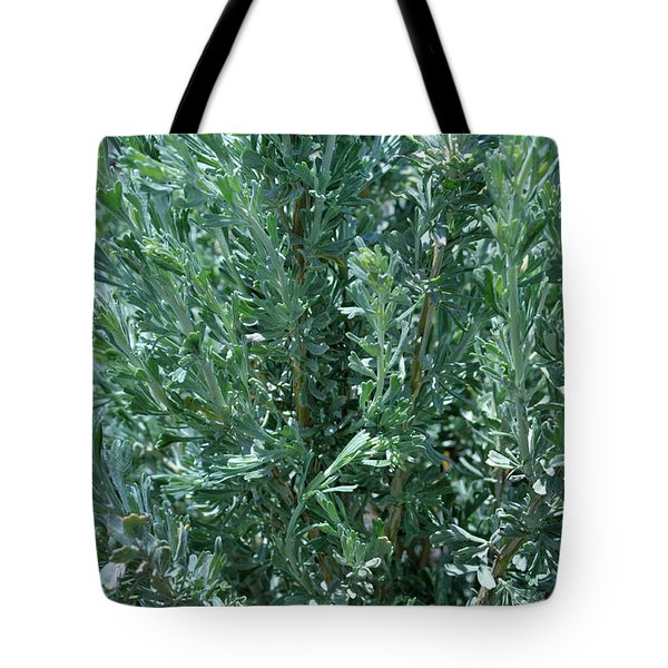 New Sage Tote Bag