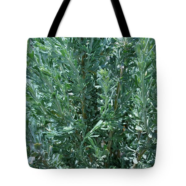 Tote Bag featuring the photograph New Sage by Ron Cline
