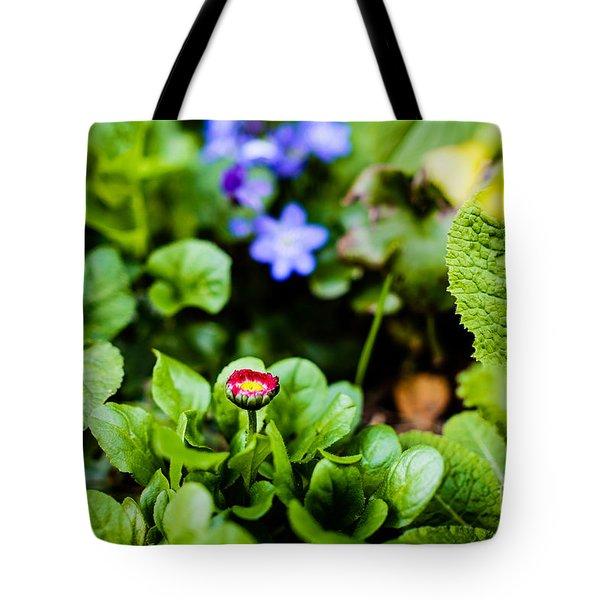 New Season For Bellis Perennis Bellissima Red Tote Bag