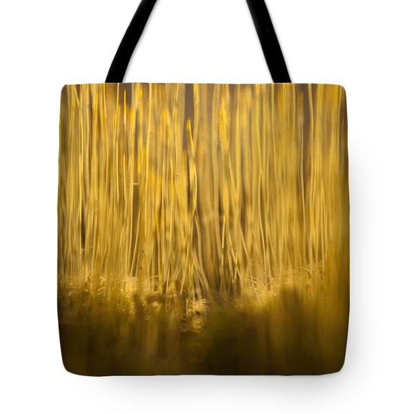 New Terra Firma Generating Tote Bag by Douglas Barnett