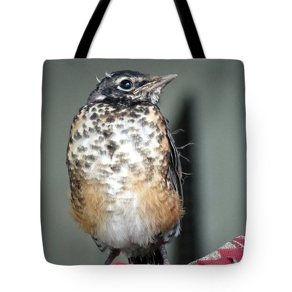 New To World Tote Bag