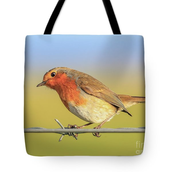 New Year Robin Tote Bag by Roy McPeak