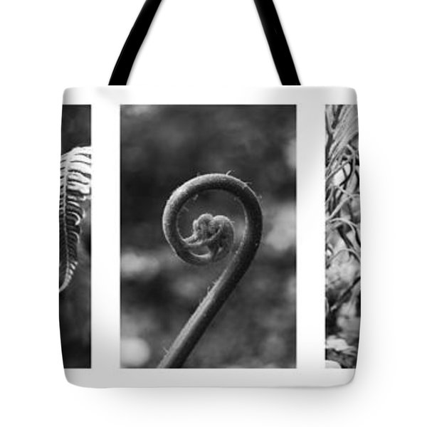 New Zealand Ferns Tote Bag by Jocelyn Friis
