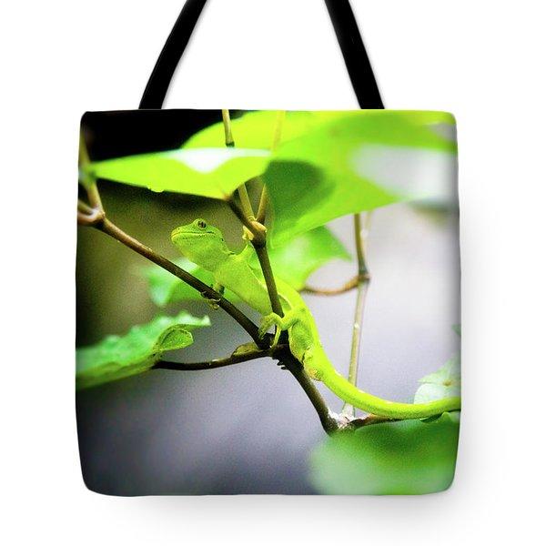 New Zealand Lizard Tote Bag