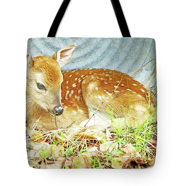 Newborn Fawn Takes Shelter In An Old Washtub II Tote Bag