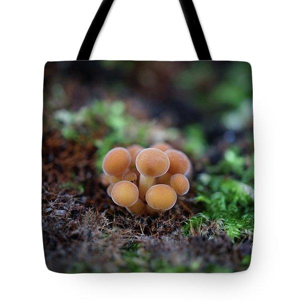 Newborn Mushroom Close-up Tote Bag