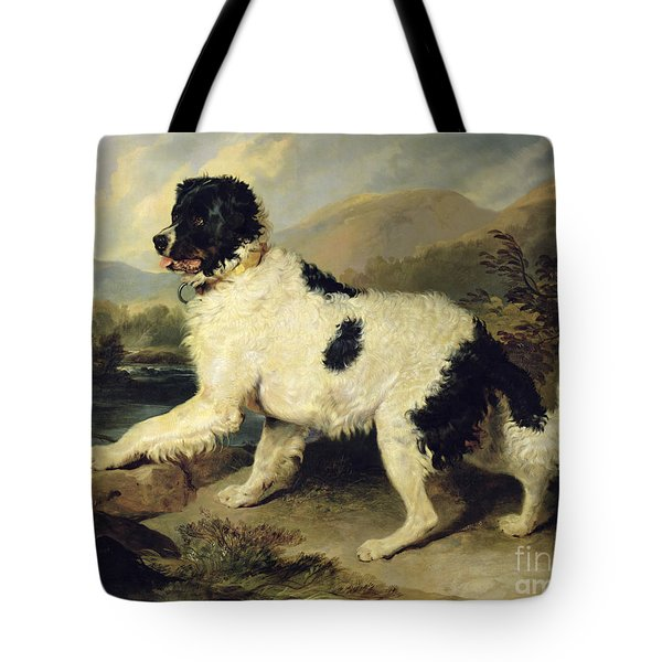 Newfoundland Dog Called Lion Tote Bag by Sir Edwin Landseer