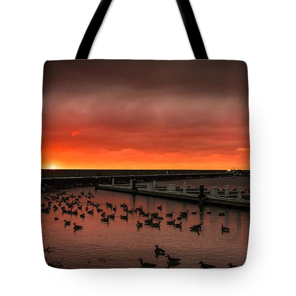 Newport Geese Tote Bag