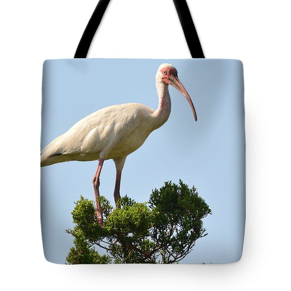 Nice View...... Tote Bag