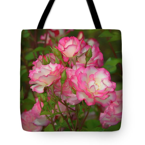 Nicole Rose Lighter Tote Bag