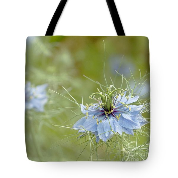 Tote Bag featuring the photograph Nigella Damascena by Cindy Garber Iverson