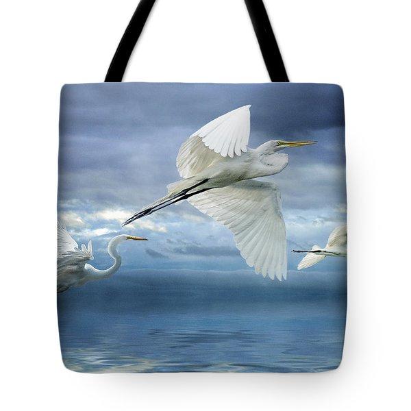 Night Flight Tote Bag by Brian Tarr