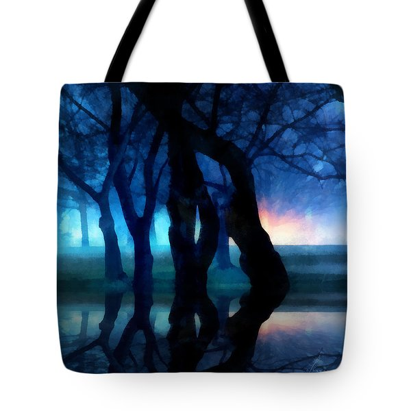 Night Fog In A City Park Tote Bag