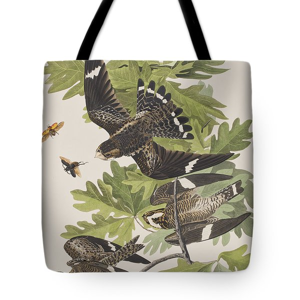 Night Hawk Tote Bag by John James Audubon