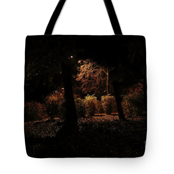 Night In The Park  Tote Bag by Ana Mireles