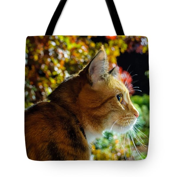 Tote Bag featuring the photograph Night Stalker by Tikvah's Hope