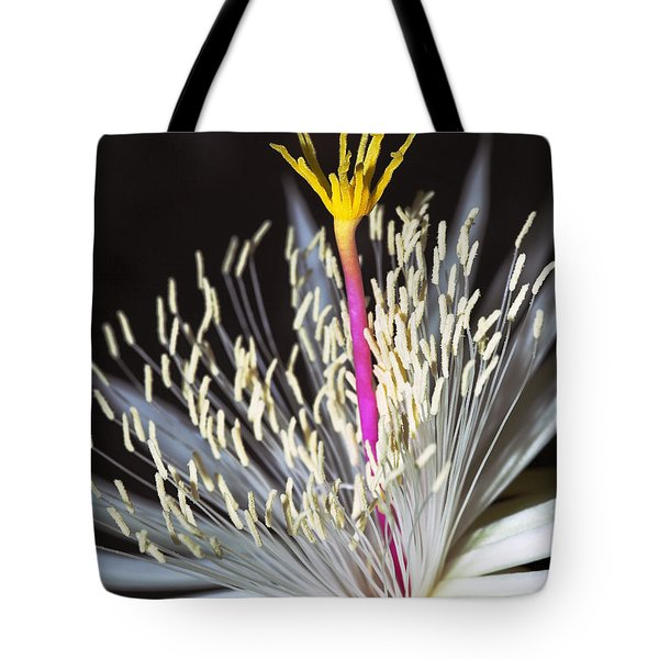 Night Time Celebration Tote Bag by Kelley King