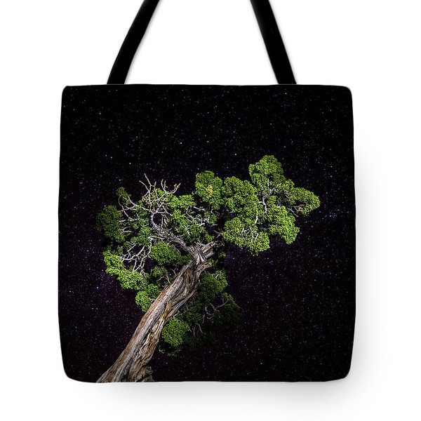 Tote Bag featuring the photograph Night Tree by T Brian Jones