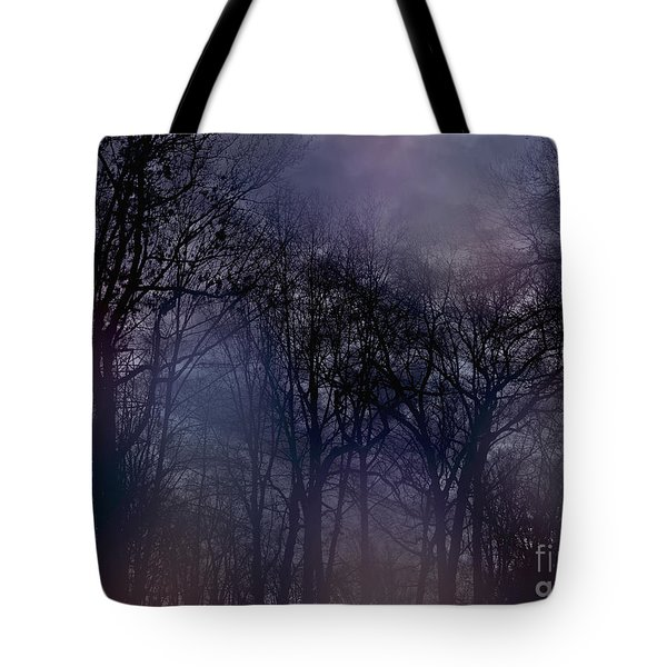 Nightfall In The Woods Tote Bag by Sandy Moulder