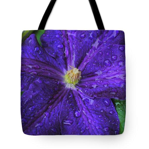 Nightflower Two Tote Bag