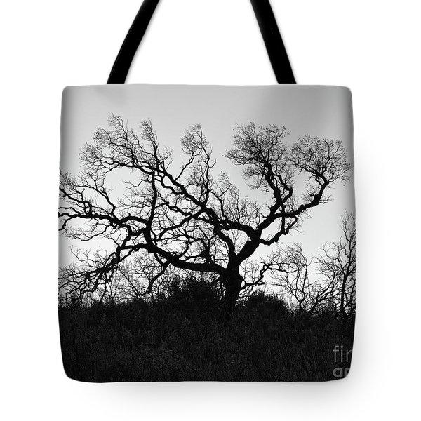 Nightmare Tree Tote Bag