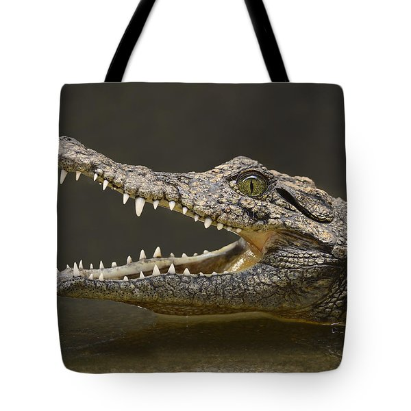Nile Crocodile Tote Bag by Tony Beck