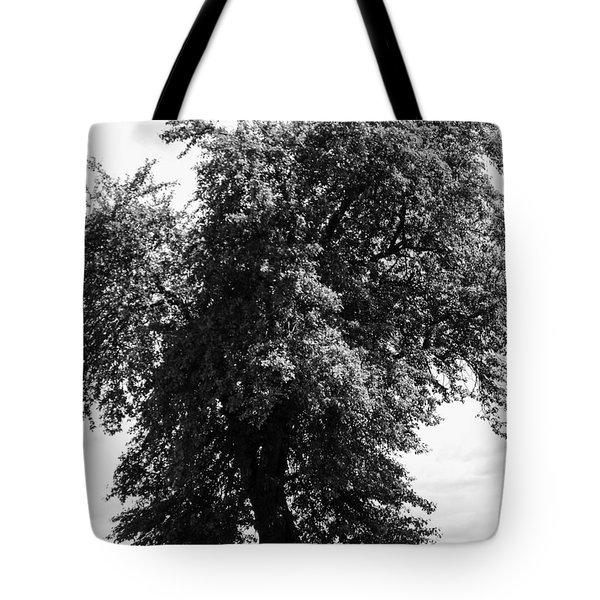 Nina Tree Dressed Out Bw Tote Bag
