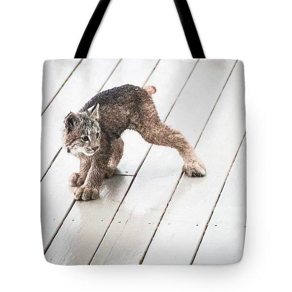 Ninja Lynx Kitty Tote Bag