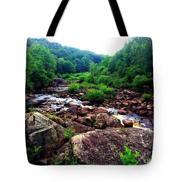 Nissan River Rapids Tote Bag