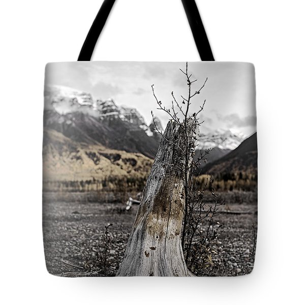 Nizina River Tree Stump Tote Bag
