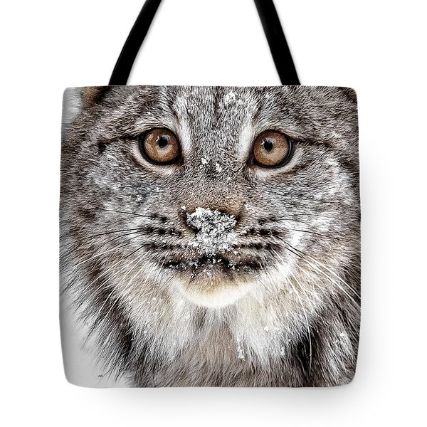 No Mouse This Time Tote Bag