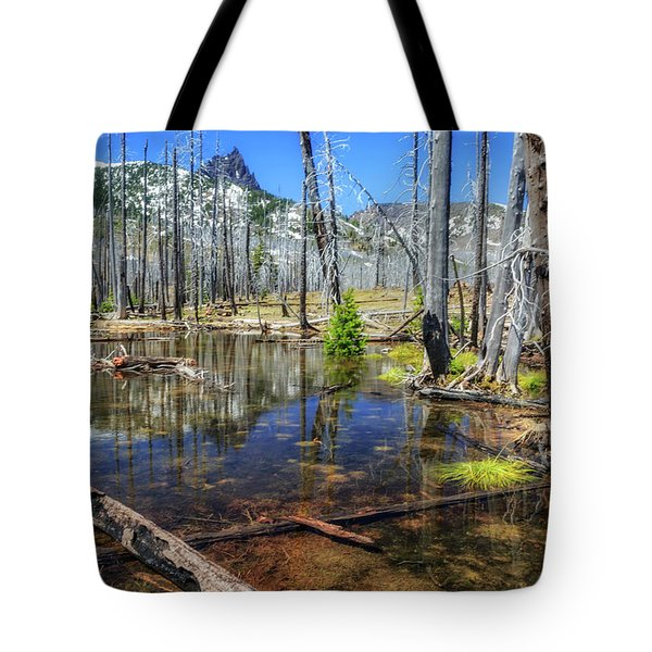 Tote Bag featuring the photograph No Name Pond by Cat Connor