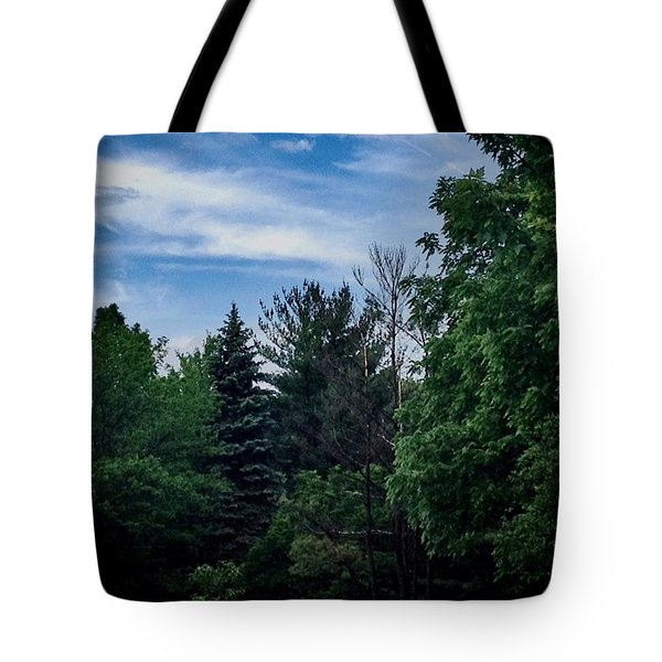 No Noise In Illinois  Tote Bag