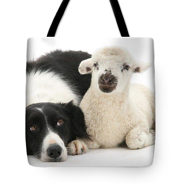 No Sheep Jokes, Please Tote Bag