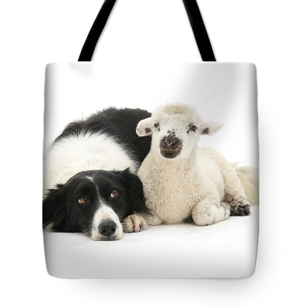 No Sheep Jokes, Please Tote Bag