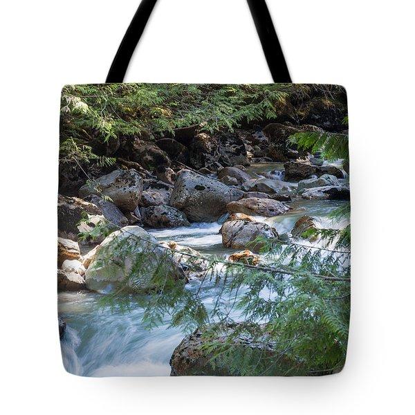 Nooksack Falls Tote Bag
