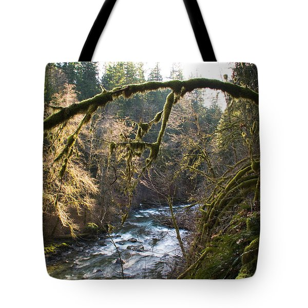 Tote Bag featuring the photograph Nooksack River by Yulia Kazansky