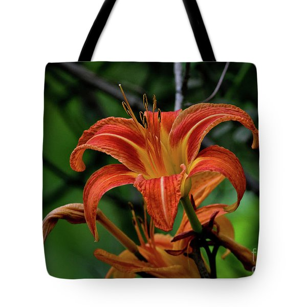 Tote Bag featuring the photograph Norris Lake Daylily 2 by Douglas Stucky