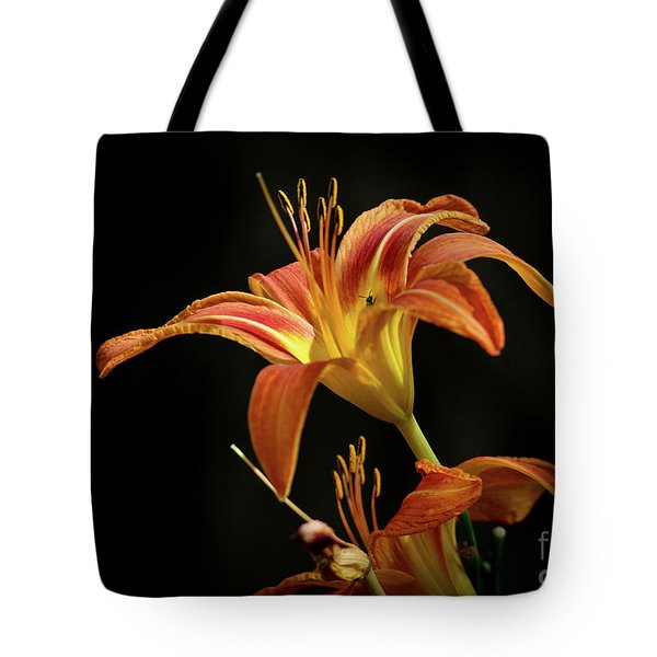 Tote Bag featuring the photograph Norris Lake Daylily by Douglas Stucky