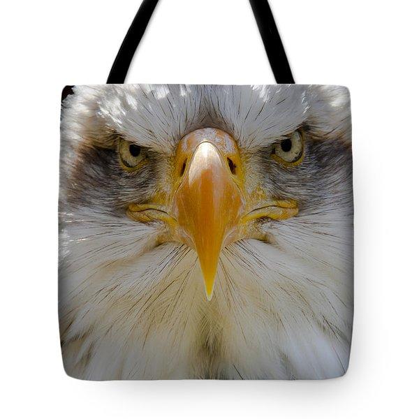 North American Bald Eagle  Tote Bag